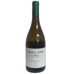 vinos villava